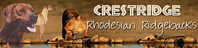Crestridge Rhodesian Ridgeback