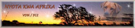 Nyota kwa Afrika - Sterne von Afrika