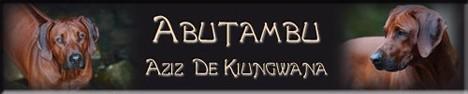Abutambu Aziz De Kiungwana