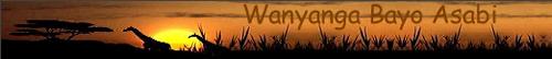 Asabi's Homepage - Wanyanga Bayo Asabi