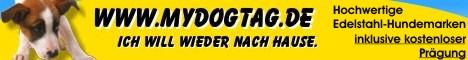 Exklusive Edelstahl-Hundemarke mit Prägung