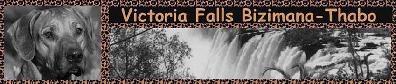Victoria Falls Bizimana-Thabo