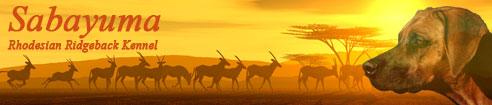 Der Rhodesian Ridgeback Kennel