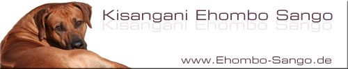Kisangani Ehombo Sango
