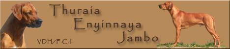 THURAIA Enyinnaya Jambo