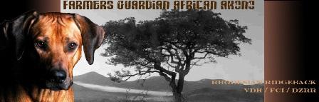 CH. Farmers Guardian African Akono