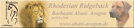 Bashaan Abasi-Aragon
