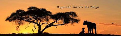 Baganda Waziri wa Moyo