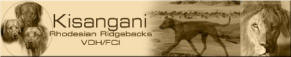 KISANGANI Rhodesian Ridgebacks VDH/FCI seit 1998